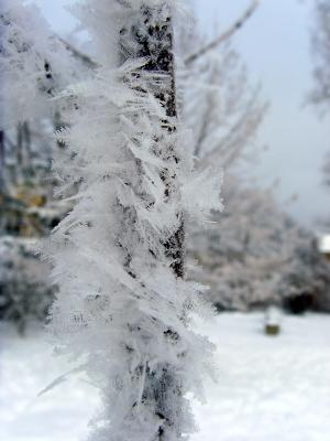 Schneekristalle bei minus 17 Grad