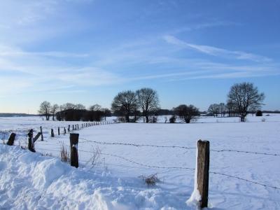 Verschneites Münsterland