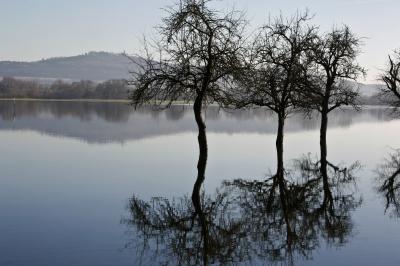 Hochwasser-Harmonie