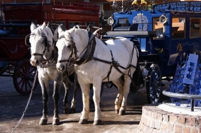 Pferdekutsche in Zermatt