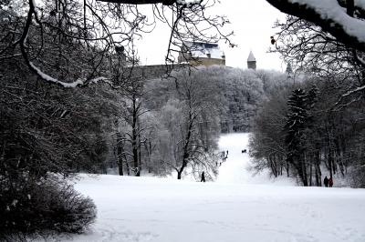 Veste Coburg im Schnee