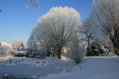 Ein Wintertag am Dorfteich