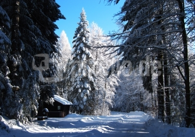 Winteridylle bei Freudenstadt