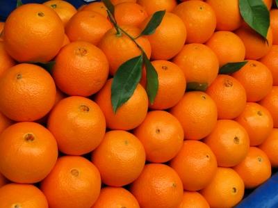 Feine Orangen