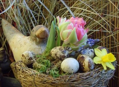 Ostergruß mit Vogel auf Balkonien