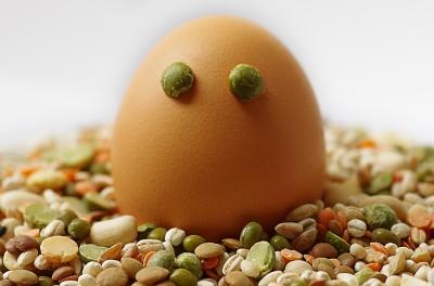 Bohnen Ei