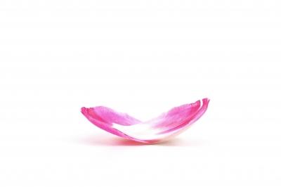 Blüten 352