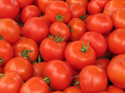 Tomaten (auf dem Markt)