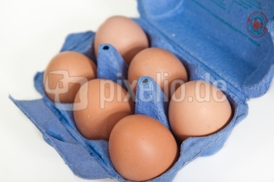 Eier im Sechserpack
