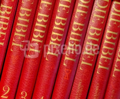 Die Bibel in 8 Bänden