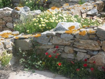 Delos: griechische Ausgrabungen 1