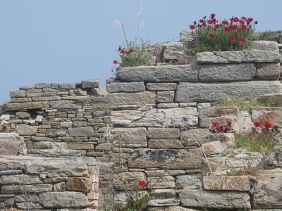 Delos: griechische Ausgrabungen 2