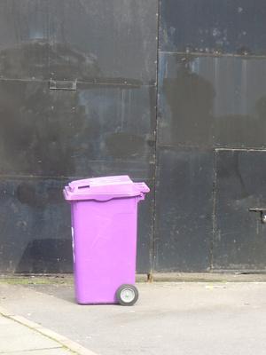 Mülltonne violett