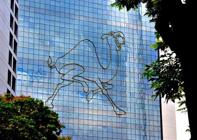 Fassaden-Kamel