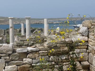 Ausgrabungen auf Delos