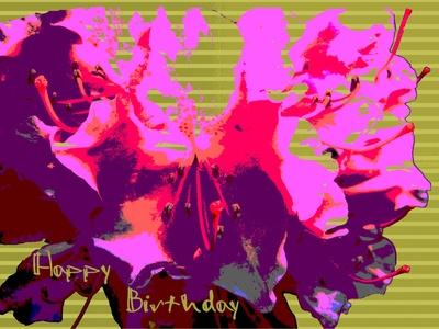 happy birthday pinkrot modern