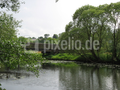 Flussaue 1