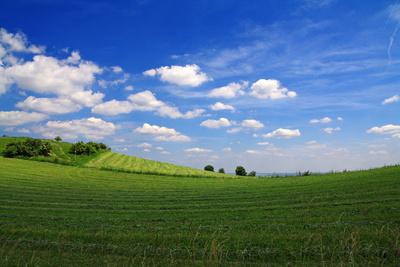 Am Sodenberg