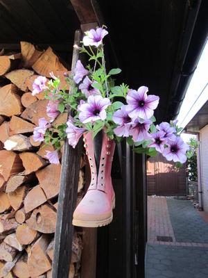 Gummistiefel-Blumen