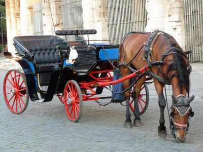 Pferd & Kutsche II