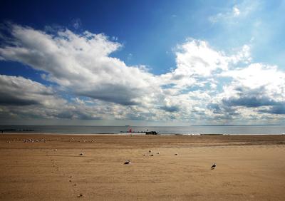 NYC - Strand von Coney Island 2