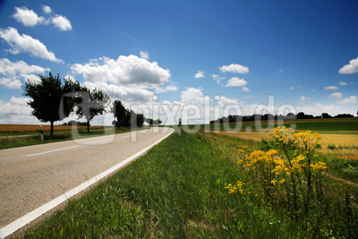 Ausflug in sommerliche Natur_quer