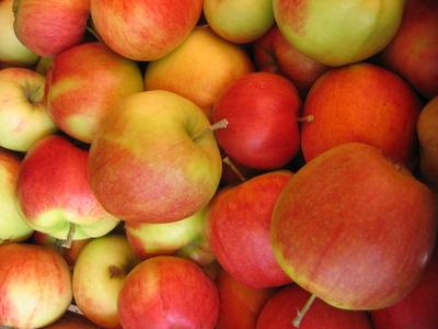 Äpfel (Sorte: Gala) in Apfelkiste