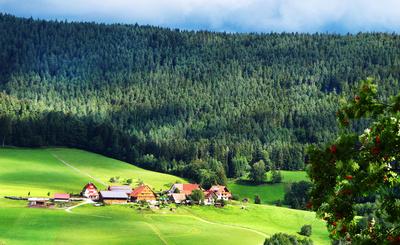 Schwarzwald - Bauernhof im Murgtal bei Baiersbronn