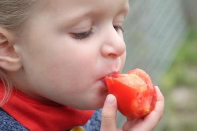 Tomatenliebhaber
