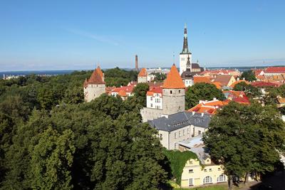 Tallinns Dächer