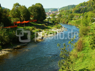 Neckar mit Altstadt Horb