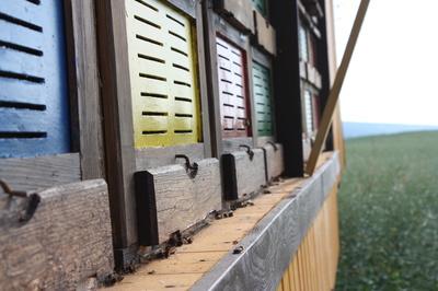 Bienen-Haus