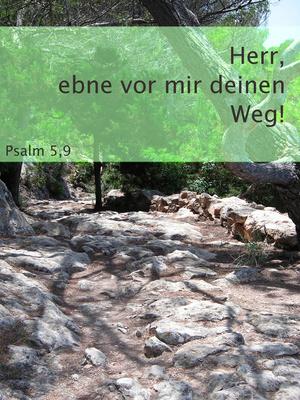 Psalm 5,9