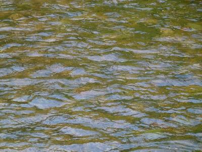 Ruhiges Wasser