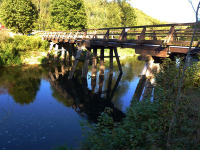 Historische Pfahljochbrücke über den Neckar 2