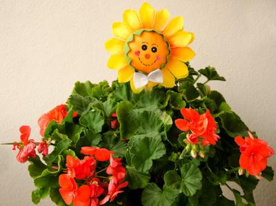 Liebe, liebe Sonne