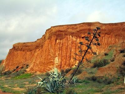 Felsenküste 1