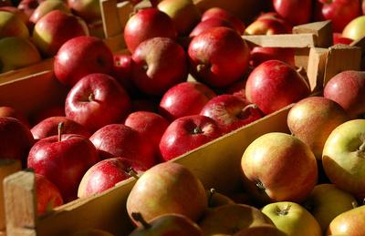 Äpfel 3