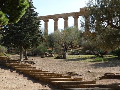 Tempel von Agrigent (Sizilien) 1