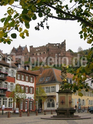 Heidelberger Ansichten