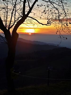 Novemberabend im Schwarzwald 2