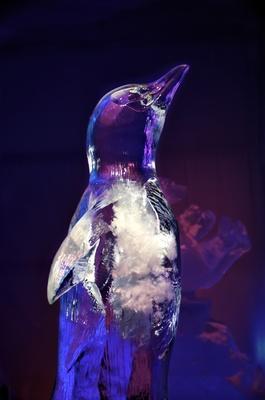 Eisskulptur-Pinguin