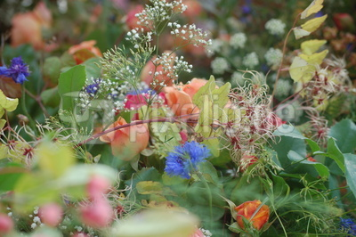 Buntes Bild mit Blumen