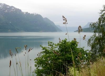 Stiller Fjord
