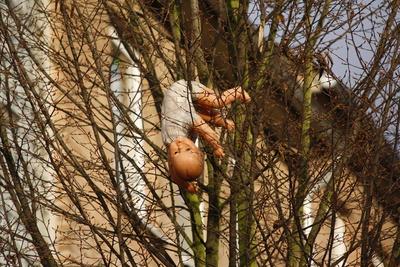 Bei uns wachsen die Puppen auf den Bäumen