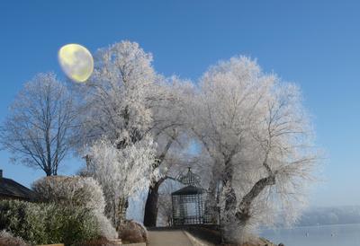 Winteridylle an Neujahr