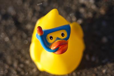 gelbe Badeente mit Taucherbrille