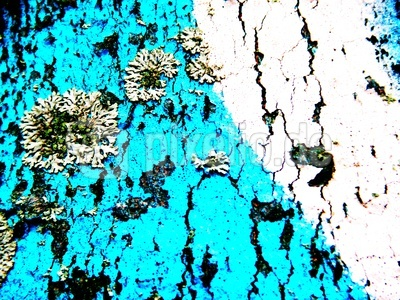Abstrakte Photographie 5/7