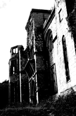 Puxley´s Mansion, Irland, im Jahre 2000, S/W