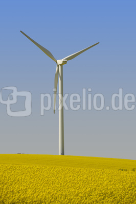 Windkraft Raps 3